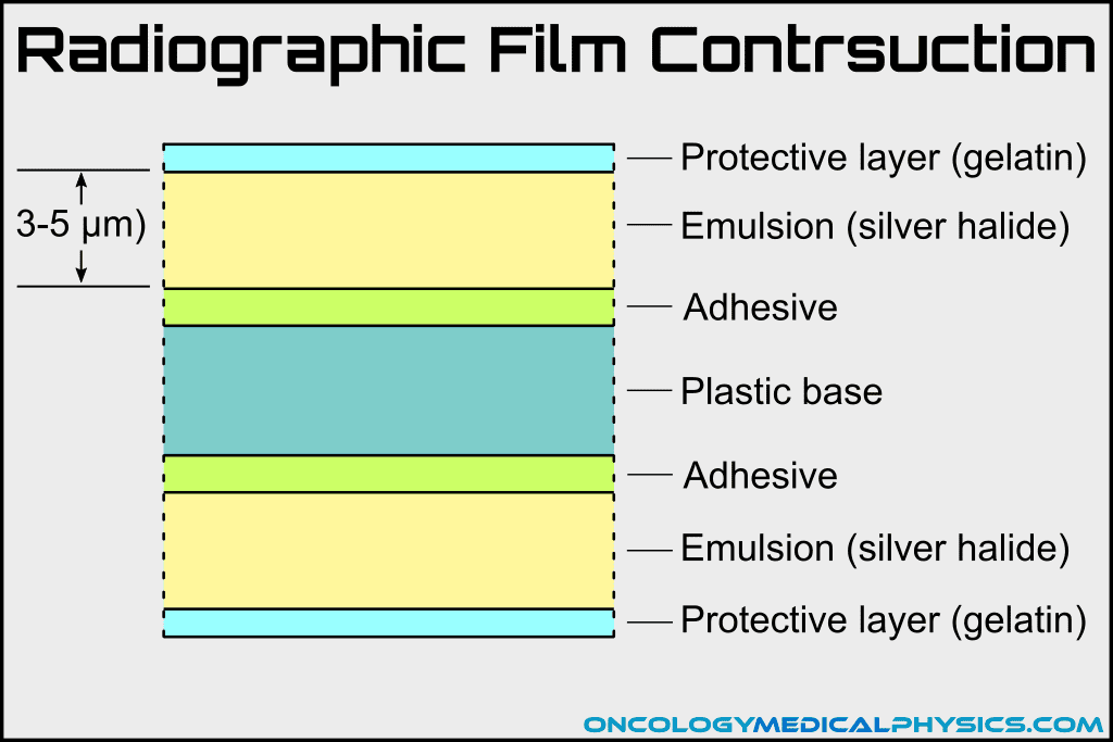 Construction of radiographic film.